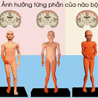 Bai Nao The Liet Co Cung 1 1 1