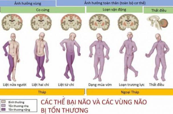 Cac The Bai Nao