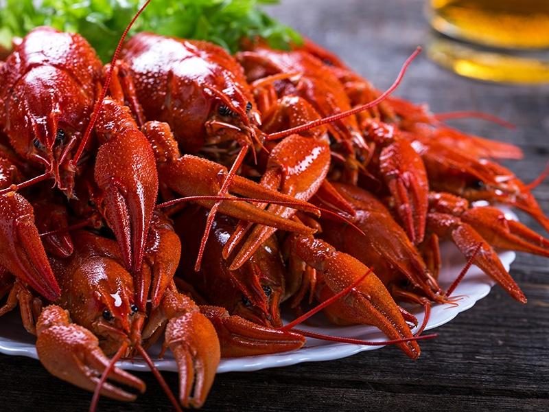 Tuyệt đối không được ăn các loại hải sản giàu đạm sẽ hạn chế bệnh nổi mề đay phát triển